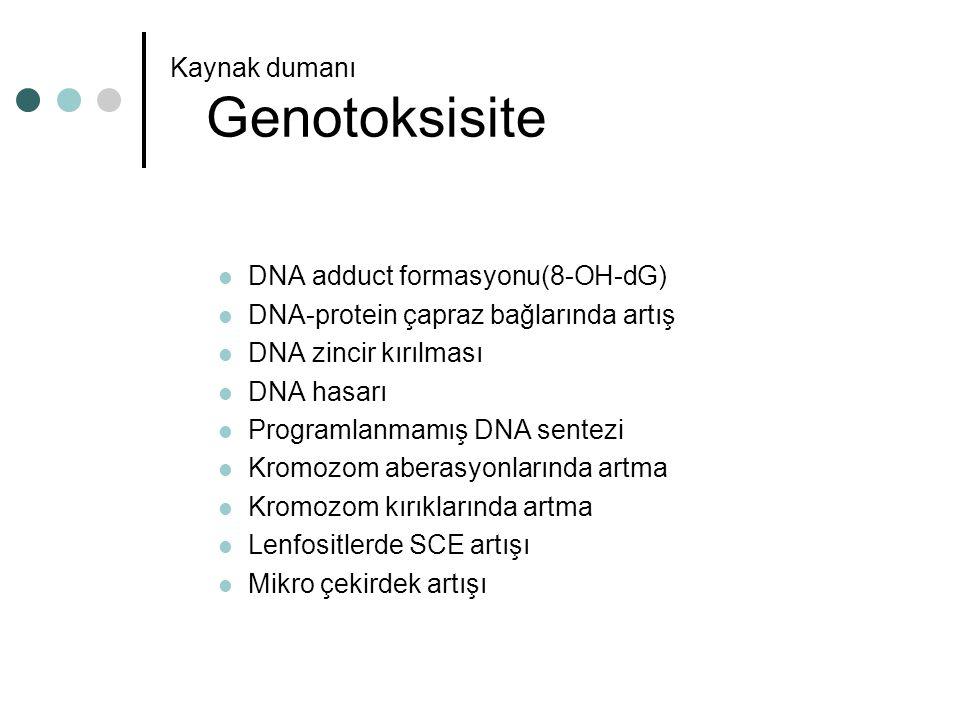 Kaynak dumanı Genotoksisite DNA adduct formasyonu(8-OH-dG) DNA-protein çapraz bağlarında artış DNA zincir kırılması DNA hasarı Programlanmamış DNA sen