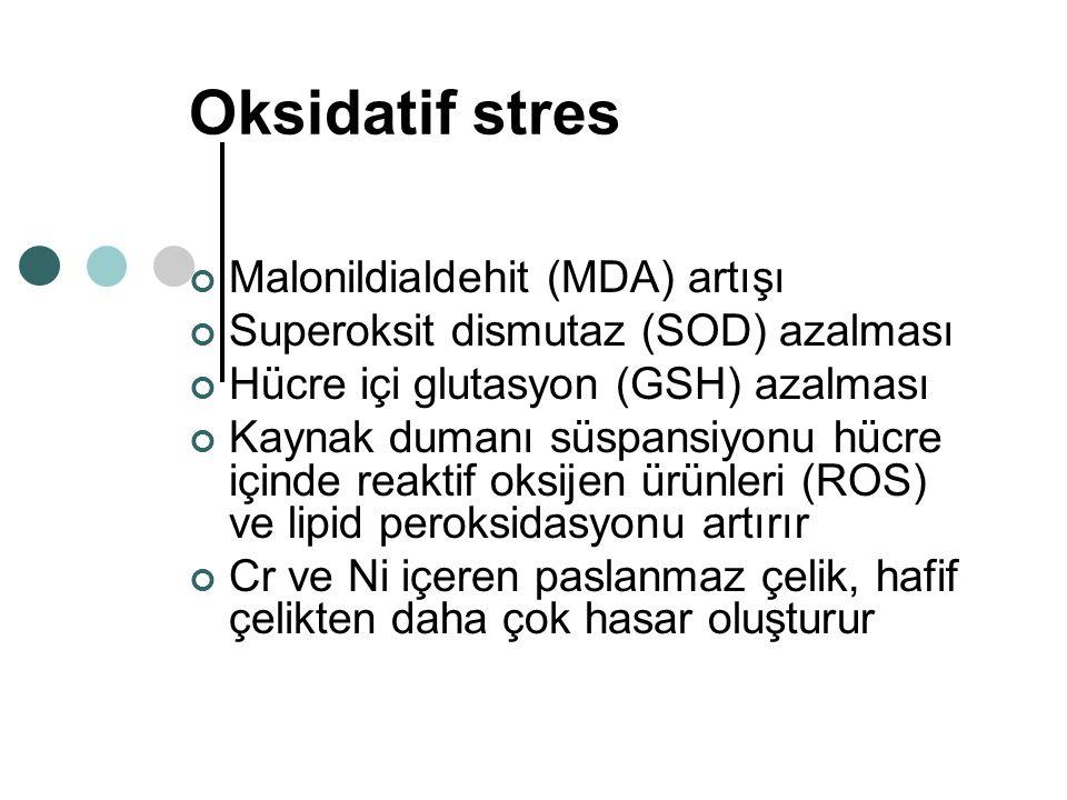 Oksidatif stres Malonildialdehit (MDA) artışı Superoksit dismutaz (SOD) azalması Hücre içi glutasyon (GSH) azalması Kaynak dumanı süspansiyonu hücre i