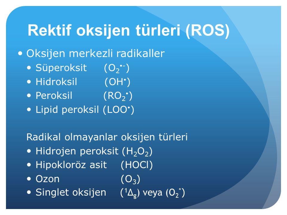 Rektif oksijen türleri (ROS) Oksijen merkezli radikaller Süperoksit (O 2  - ) Hidroksil (OH  ) Peroksil (RO 2  ) Lipid peroksil (LOO  ) Radikal olmayanlar oksijen türleri Hidrojen peroksit (H 2 O 2 ) Hipokloröz asit (HOCl) Ozon (O 3 ) Singlet oksijen ( 1 Δ g ) veya (O 2 * )