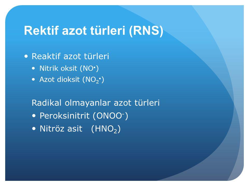 Rektif azot türleri (RNS) Reaktif azot türleri Nitrik oksit (NO ) Azot dioksit (NO 2 ) Radikal olmayanlar azot türleri Peroksinitrit (ONOO - ) Nitröz asit (HNO 2 )