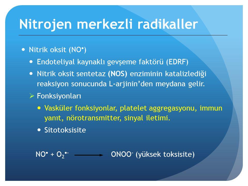 Nitrojen merkezli radikaller Nitrik oksit (NO  ) Endoteliyal kaynaklı gevşeme faktörü (EDRF) Nitrik oksit sentetaz (NOS) enziminin katalizlediği reaksiyon sonucunda L-arjinin'den meydana gelir.