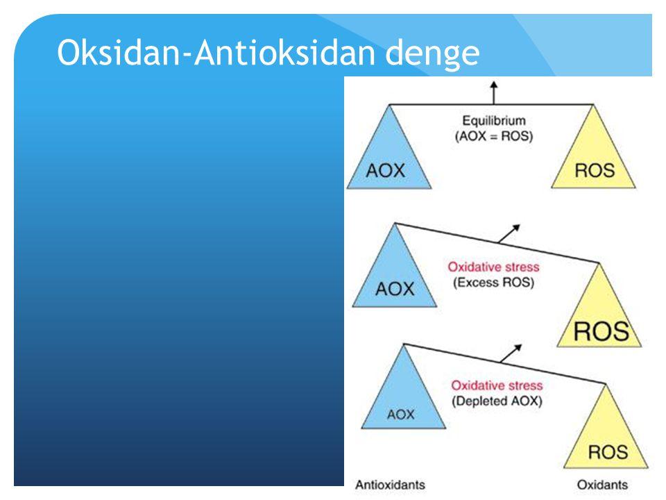 Oksidan-Antioksidan denge
