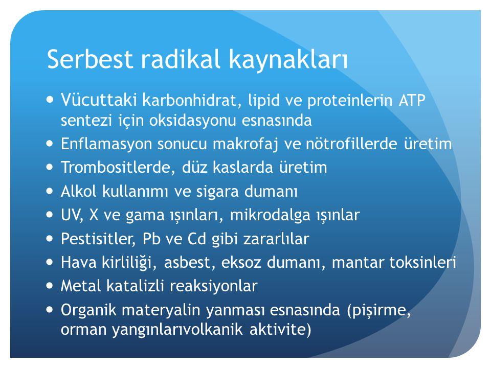 Serbest radikal kaynakları Vücuttaki k arbonhidrat, lipid ve proteinlerin ATP sentezi için oksidasyonu esnasında Enflamasyon sonucu makrofaj ve nötrof