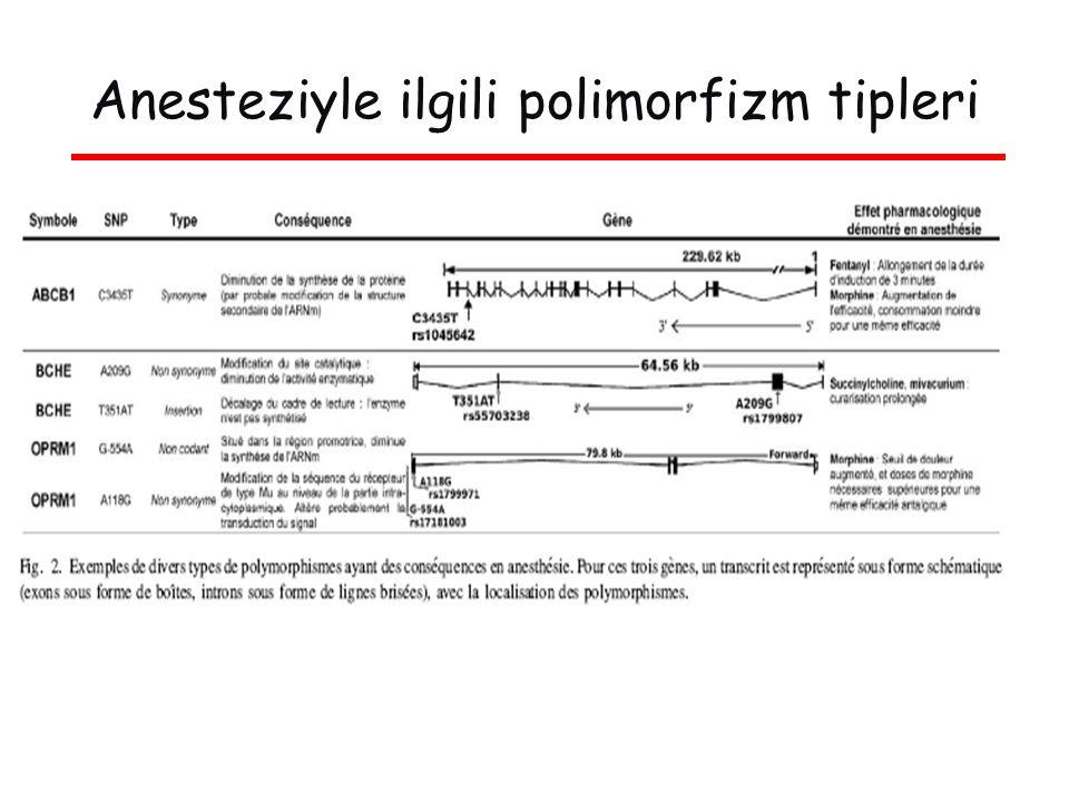 Anesteziyle ilgili polimorfizm tipleri