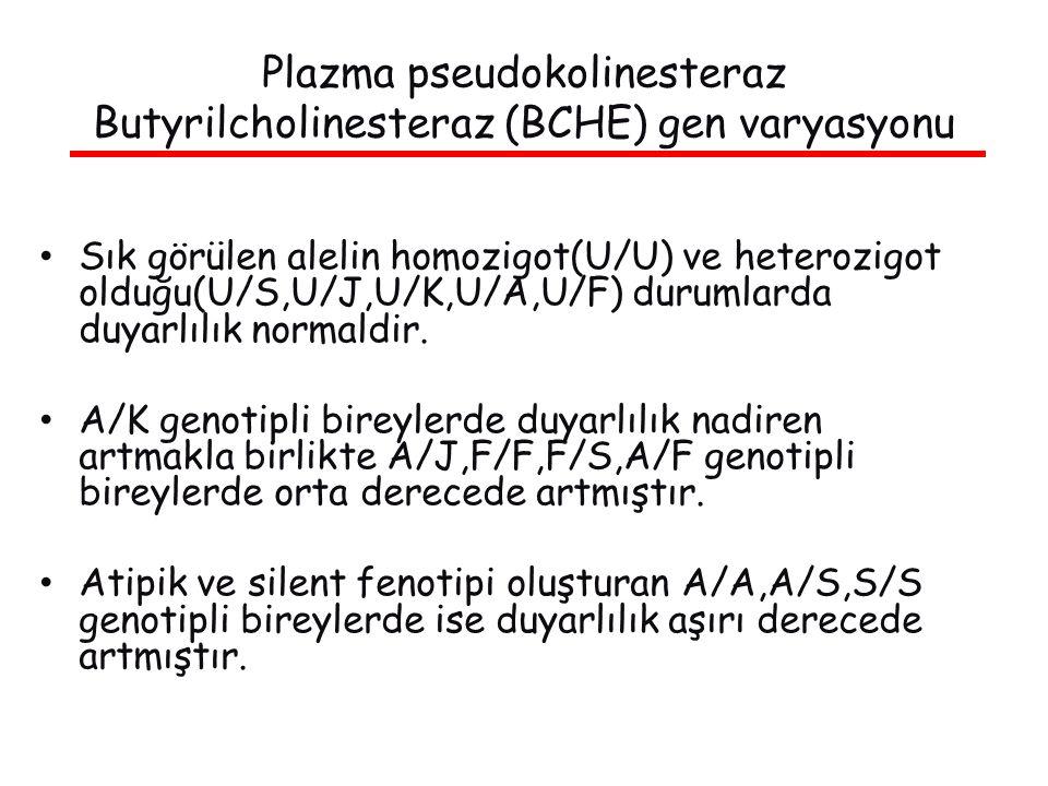 Sık görülen alelin homozigot(U/U) ve heterozigot olduğu(U/S,U/J,U/K,U/A,U/F) durumlarda duyarlılık normaldir.