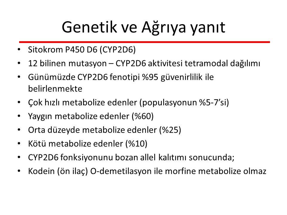 Genetik ve Ağrıya yanıt Sitokrom P450 D6 (CYP2D6) 12 bilinen mutasyon – CYP2D6 aktivitesi tetramodal dağılımı Günümüzde CYP2D6 fenotipi %95 güvenirlilik ile belirlenmekte Çok hızlı metabolize edenler (populasyonun %5-7'si) Yaygın metabolize edenler (%60) Orta düzeyde metabolize edenler (%25) Kötü metabolize edenler (%10) CYP2D6 fonksiyonunu bozan allel kalıtımı sonucunda; Kodein (ön ilaç) O-demetilasyon ile morfine metabolize olmaz
