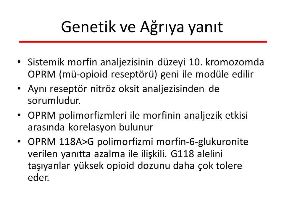 Sistemik morfin analjezisinin düzeyi 10.
