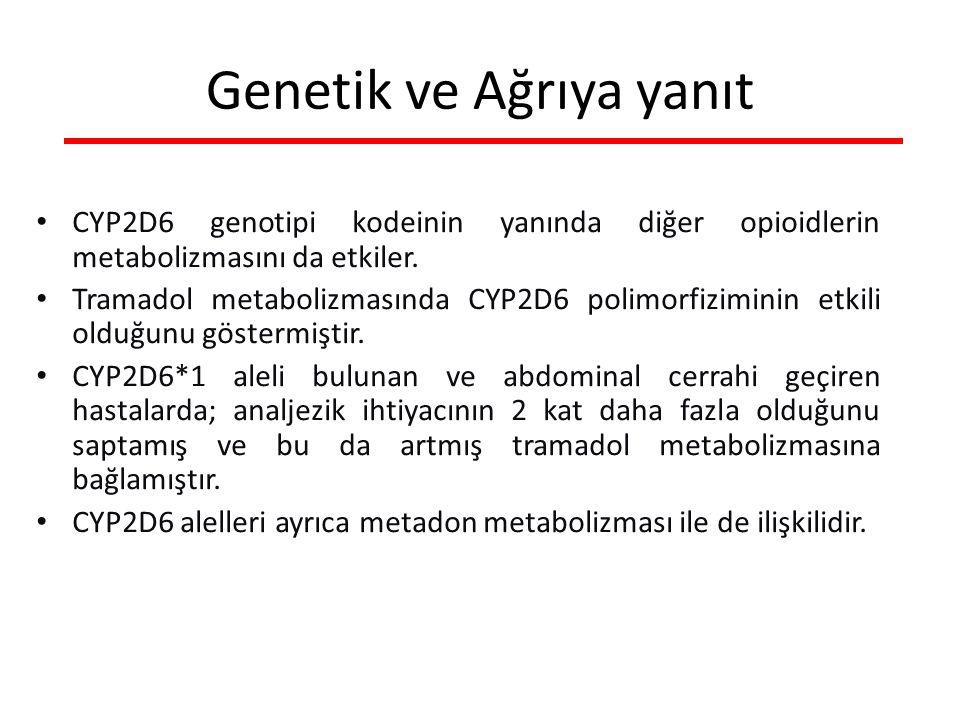 CYP2D6 genotipi kodeinin yanında diğer opioidlerin metabolizmasını da etkiler.