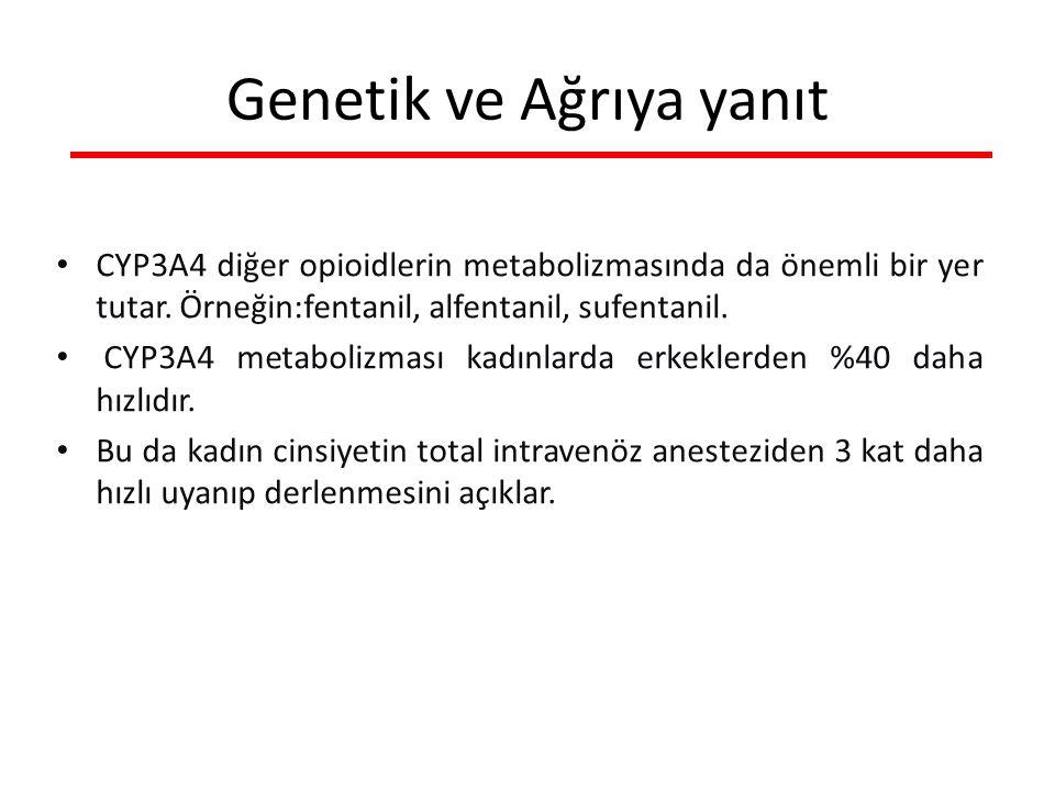 CYP3A4 diğer opioidlerin metabolizmasında da önemli bir yer tutar.