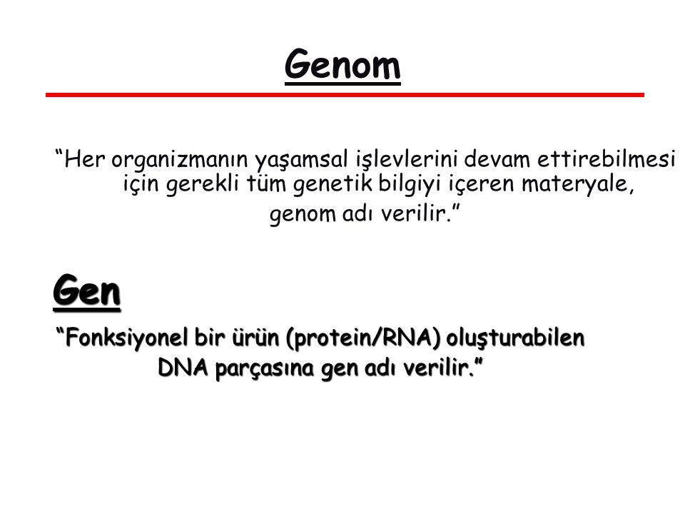 Genom Her organizmanın yaşamsal işlevlerini devam ettirebilmesi için gerekli tüm genetik bilgiyi içeren materyale, genom adı verilir. Gen Fonksiyonel bir ürün (protein/RNA) oluşturabilen DNA parçasına gen adı verilir.