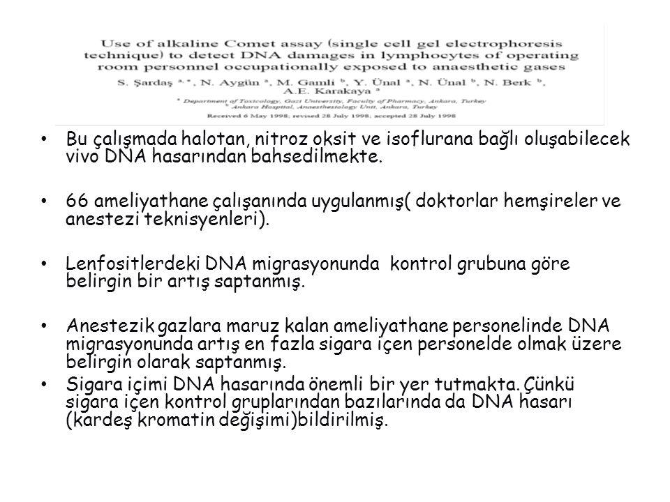 Bu çalışmada halotan, nitroz oksit ve isoflurana bağlı oluşabilecek vivo DNA hasarından bahsedilmekte.