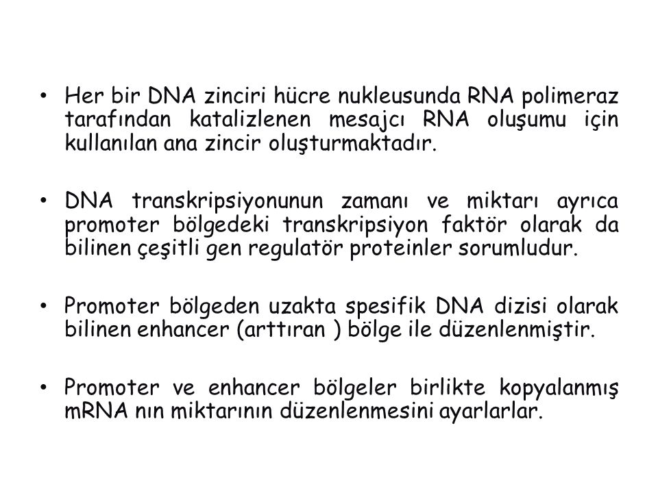 Her bir DNA zinciri hücre nukleusunda RNA polimeraz tarafından katalizlenen mesajcı RNA oluşumu için kullanılan ana zincir oluşturmaktadır.