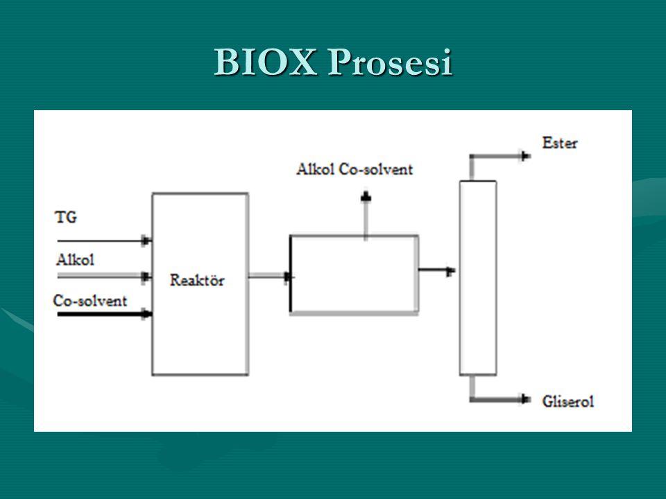 BIOX Prosesi