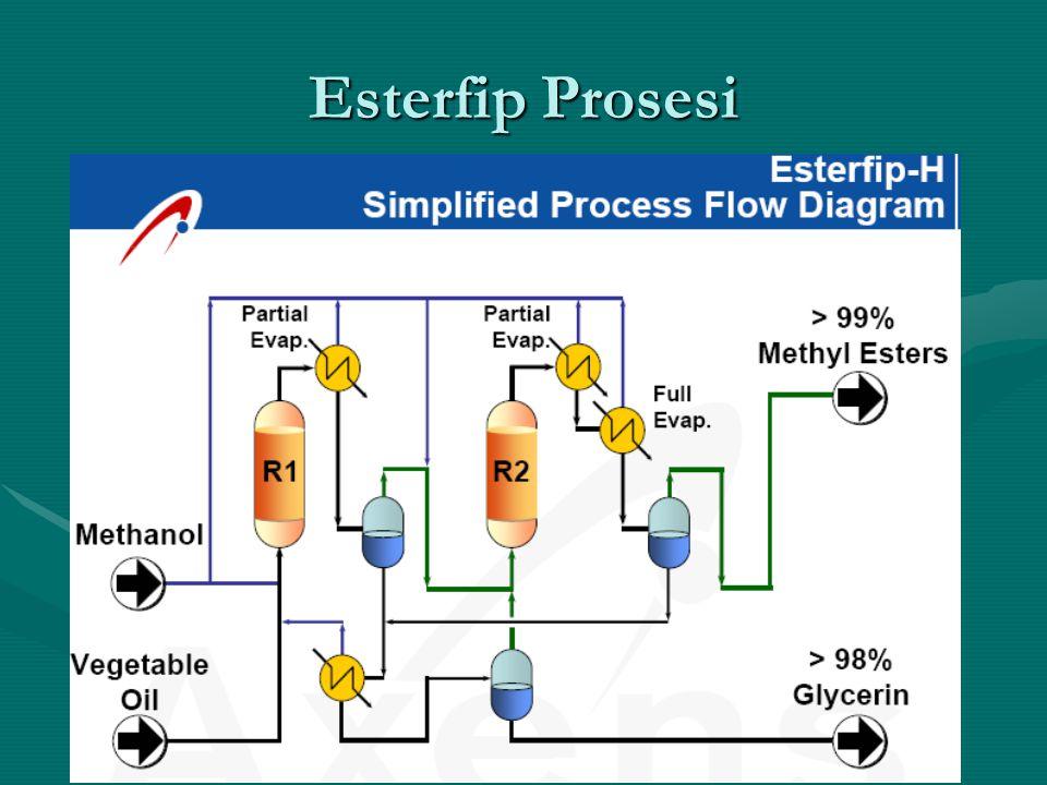 Esterfip Prosesi