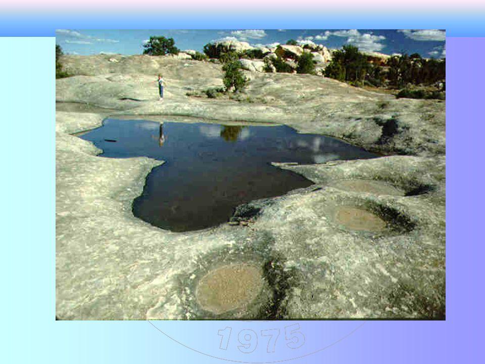 AYRIŞMA Fiziksel ayrışma Kimyasal Ayrışma Konglomera Kumtaşı Siltaşı Yeni mineraller (Kil boyutunda) SolüsyonBitki bünyesine alınma Evaporit Kireçtaşı Turba Kömür Şeyl Kırıntı