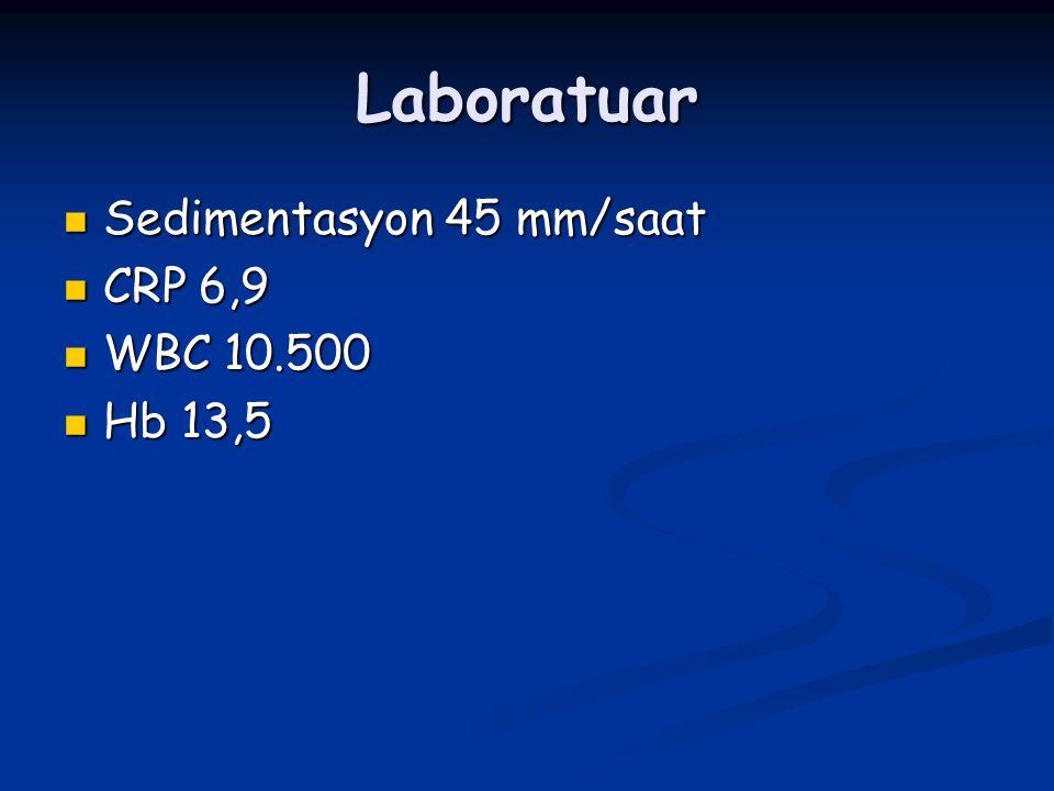 Laboratuar Sedimentasyon 45 mm/saat Sedimentasyon 45 mm/saat CRP 6,9 CRP 6,9 WBC 10.500 WBC 10.500 Hb 13,5 Hb 13,5