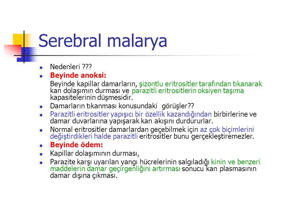 Serebral malarya Nedenleri ??? Beyinde anoksi: Beyinde kapillar damarların, şizontlu eritrositler tarafından tıkanarak kan dolaşımın durması ve parazi