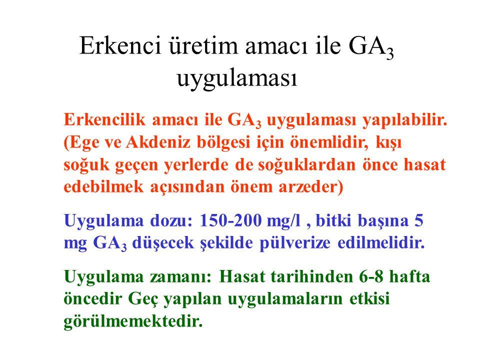 Erkenci üretim amacı ile GA 3 uygulaması Erkencilik amacı ile GA 3 uygulaması yapılabilir.