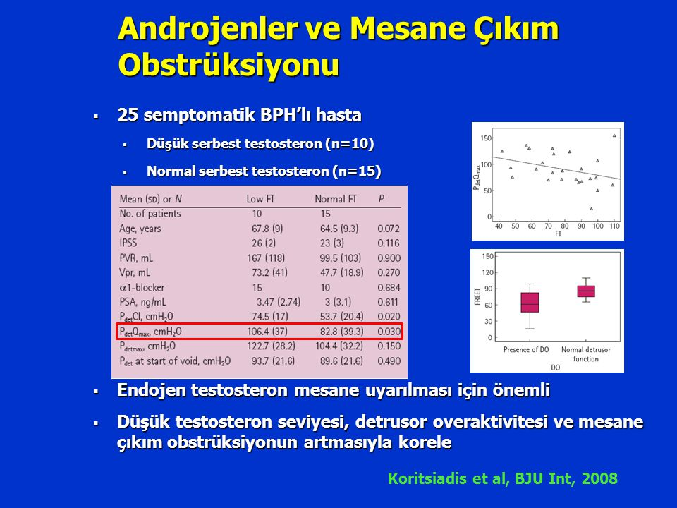 Androjenler ve Mesane Çıkım Obstrüksiyonu  25 semptomatik BPH'lı hasta  Düşük serbest testosteron (n=10)  Normal serbest testosteron (n=15)  Endoj