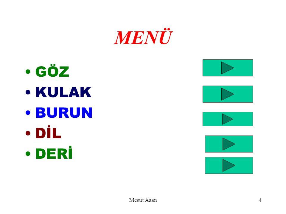 MENÜ GÖZ KULAK BURUN DİL DERİ Mesut Asan4