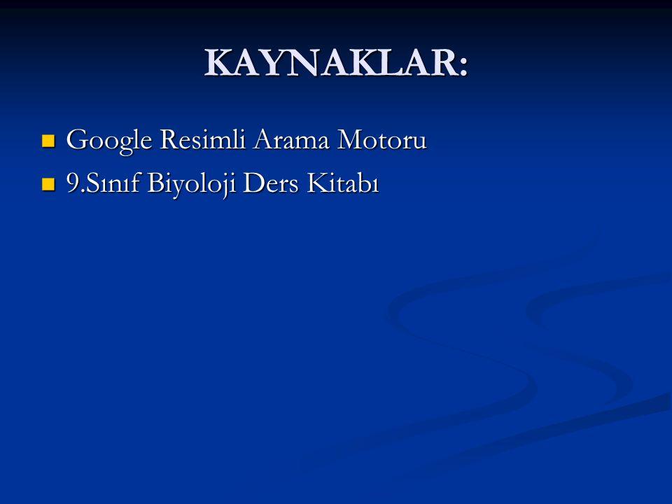 KAYNAKLAR: Google Resimli Arama Motoru Google Resimli Arama Motoru 9.Sınıf Biyoloji Ders Kitabı 9.Sınıf Biyoloji Ders Kitabı