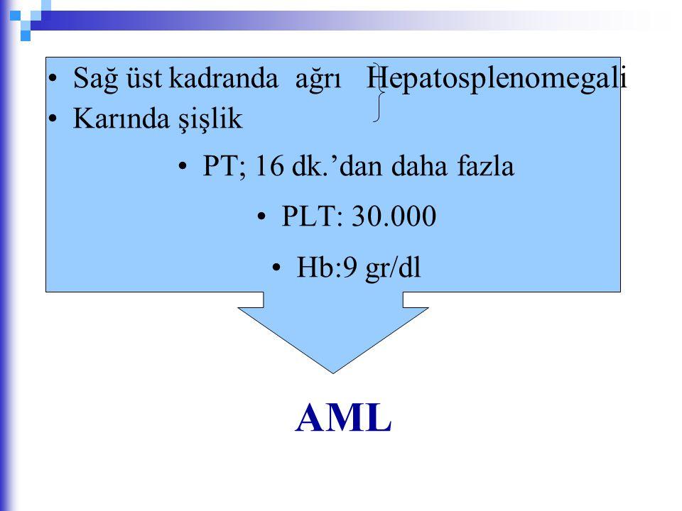 Sağ üst kadranda ağrı Hepatosplenomegali Karında şişlik PT; 16 dk.'dan daha fazla PLT: 30.000 Hb:9 gr/dl AML