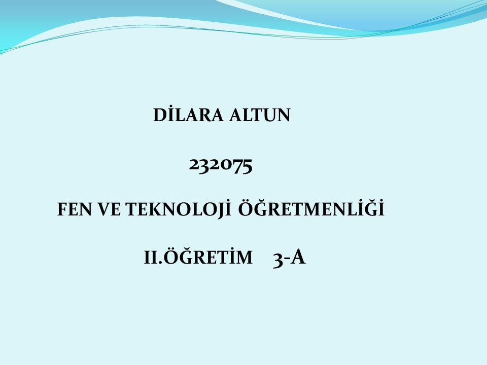 DİLARA ALTUN 232075 FEN VE TEKNOLOJİ ÖĞRETMENLİĞİ II.ÖĞRETİM 3-A