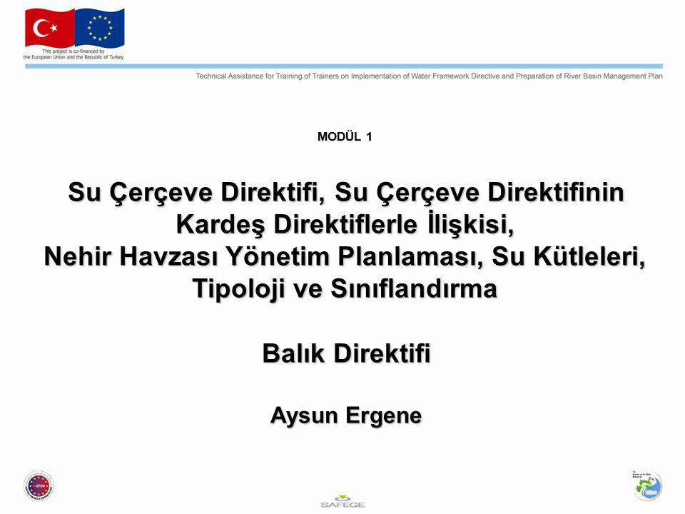 Tatlısu Balık Direktifi 22 Aralık 2013'te Su Çerçeve Direktifi kapsamından çıkarılan Tatlısu Balık Direktifi (FWF), Kabuklu Direktifi (SWD) ve Tehlikeli Maddeler Direktifi (DSD) Tatlısu Balık Direktifi için, Su Çerçeve Direktifi kapsamında belirlenen statüler bu alandaki balıkların korunma durumunu belirleyecektir.