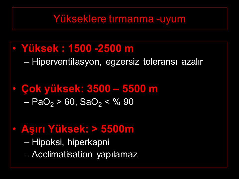 Yükseklere tırmanma -uyum Yüksek : 1500 -2500 m –Hiperventilasyon, egzersiz toleransı azalır Çok yüksek: 3500 – 5500 m –PaO 2 > 60, SaO 2 < % 90 Aşırı Yüksek: > 5500m –Hipoksi, hiperkapni –Acclimatisation yapılamaz