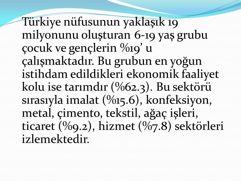 Türkiye nüfusunun yaklaşık 19 milyonunu oluşturan 6-19 yaş grubu çocuk ve gençlerin %19' u çalışmaktadır.