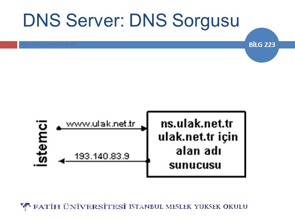 BİLG 223 DNS Server: DNS Sorgusu