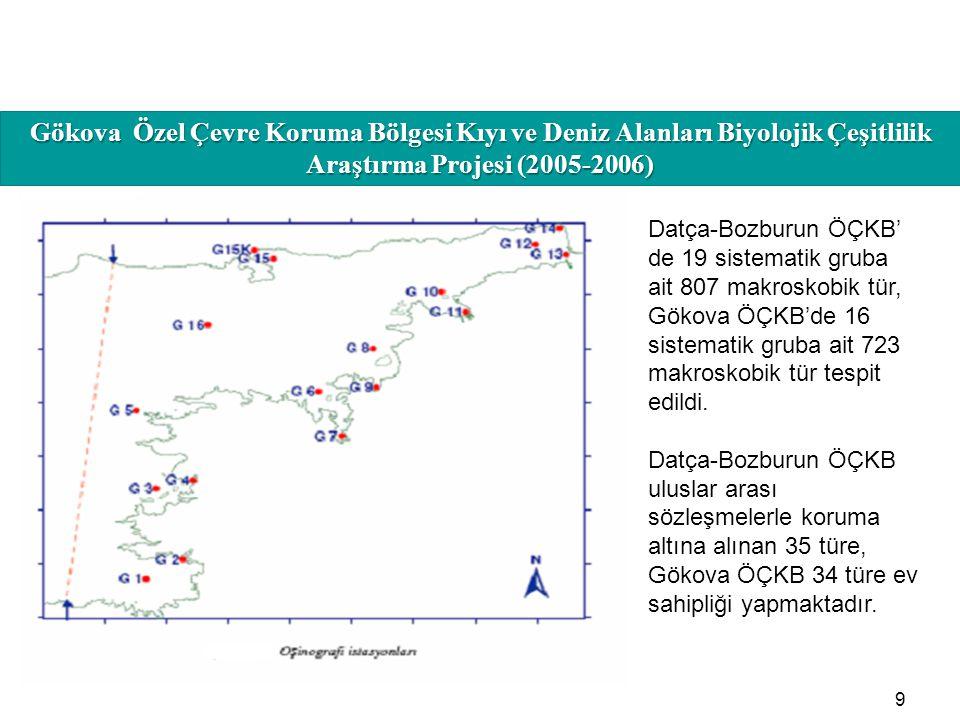 HAFIZAMIZI TAZELEYELİM 9 Datça-Bozburun ÖÇKB' de 19 sistematik gruba ait 807 makroskobik tür, Gökova ÖÇKB'de 16 sistematik gruba ait 723 makroskobik t