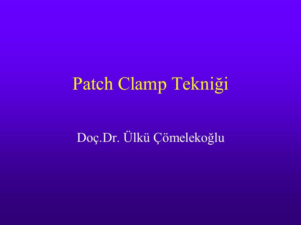 Patch Clamp (1976 ve sonrası) 1976 yılında enzimatik olarak yüzeyi temizlenmiş kurbağa kas hücre zarınının küçük bir parçası Neher ve Sakmann tarafından izole edilmiş ve pipet ucundaki zar parçasında asetilkolin ile aktive olan iyon kanalı akımları gözlenmiştir