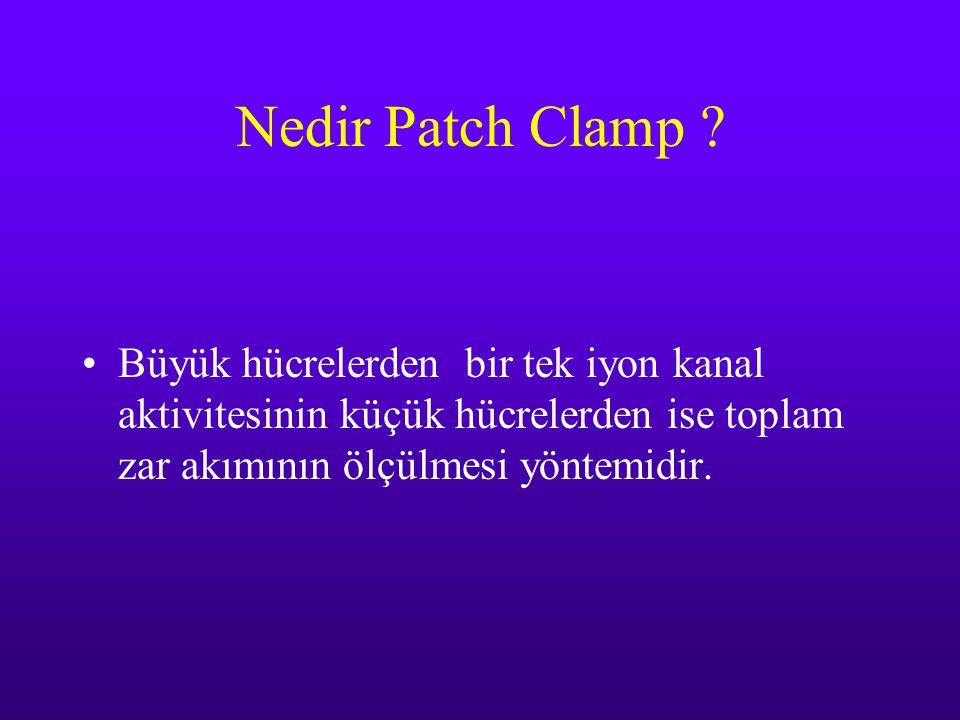 Nedir Patch Clamp .