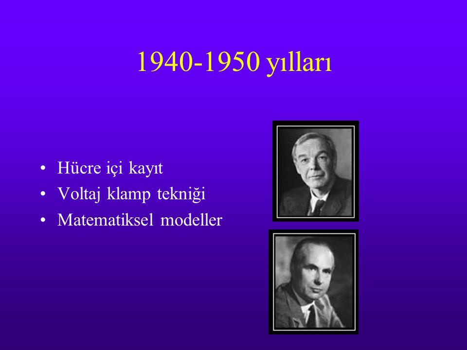 1940-1950 yılları Hücre içi kayıt Voltaj klamp tekniği Matematiksel modeller