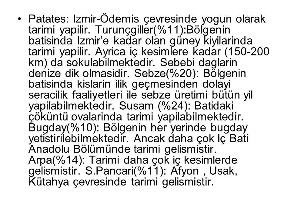 Patates: Izmir-Ödemis çevresinde yogun olarak tarimi yapilir. Turunçgiller(%11):Bölgenin batisinda Izmir'e kadar olan güney kiyilarinda tarimi yapilir