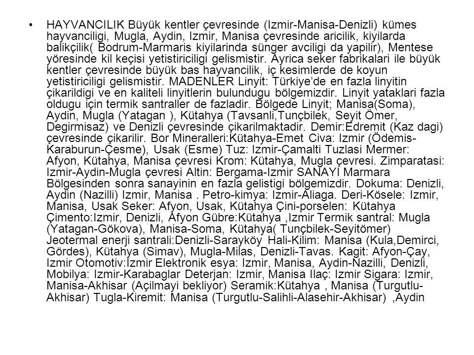 HAYVANCILIK Büyük kentler çevresinde (Izmir-Manisa-Denizli) kümes hayvanciligi, Mugla, Aydin, Izmir, Manisa çevresinde aricilik, kiyilarda balikçilik(