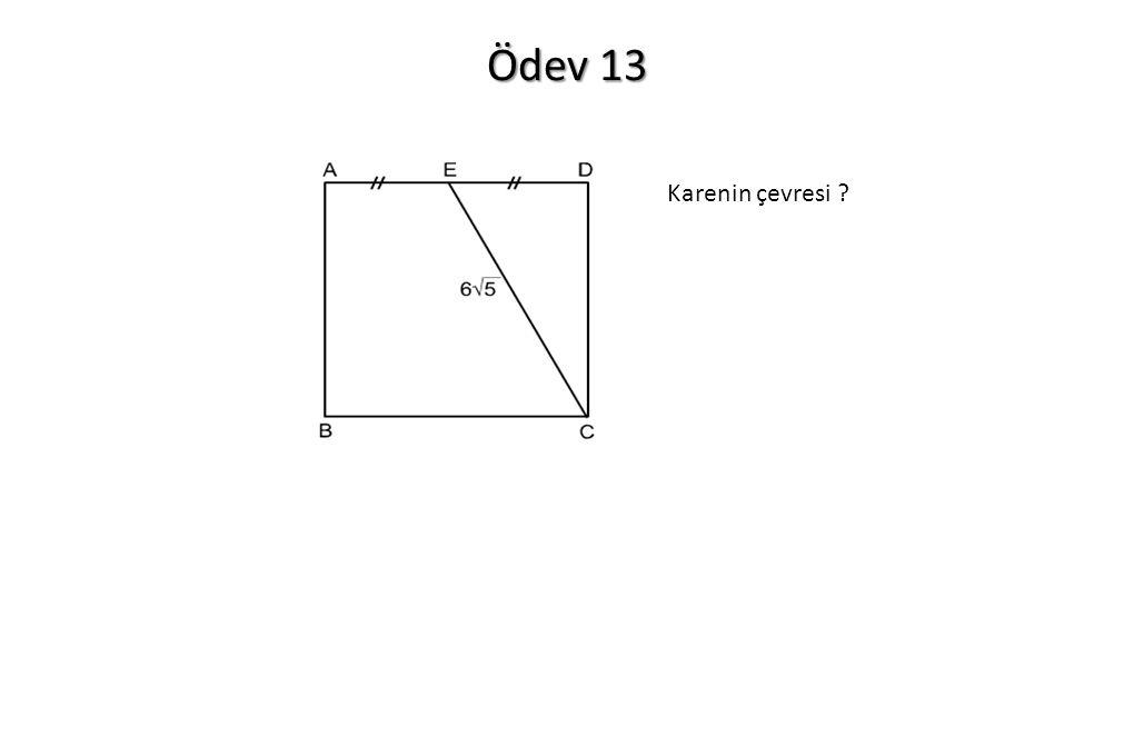Ödev 13 Karenin çevresi ?