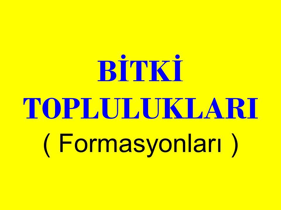 B İ TK İ TOPLULUKLARI ( Formasyonları )