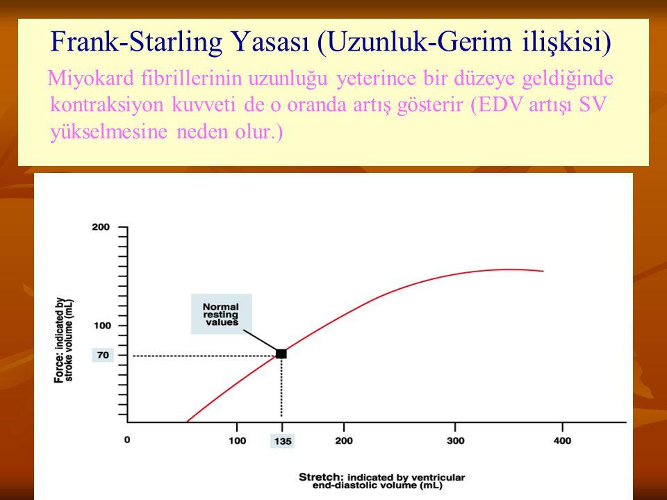 Frank-Starling Yasası (Uzunluk-Gerim ilişkisi) Miyokard fibrillerinin uzunluğu yeterince bir düzeye geldiğinde kontraksiyon kuvveti de o oranda artış gösterir (EDV artışı SV yükselmesine neden olur.)