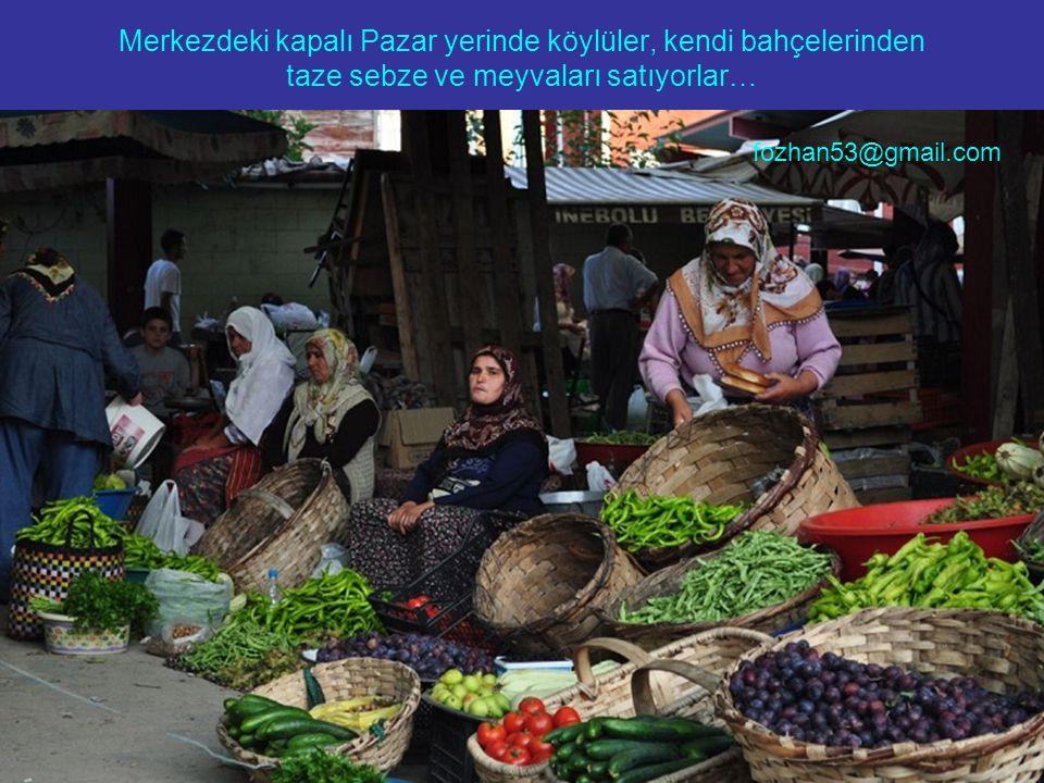 Karadeniz manzaralı böyle bir bağ evinin olmasını kim istemez… fozhan53@gmail.com
