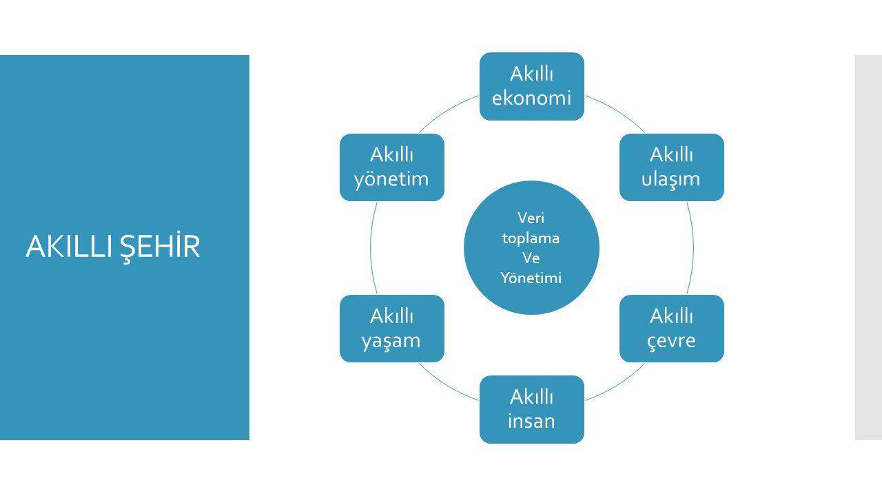 İSTANBUL ULAŞIM AĞI GÜNCELLEME PROJESİ - HEDEFLER  Mevcut ulaşım ağının güncellenmesi  Anayolların güncellenmesi  UTK ve UKOME kararlarının ulaşım ağına entegre edilmesi BONUS: İstanbul'un ulaşım ağına ait güncel panoramik 360 0 görüntülerin elde edilmesi