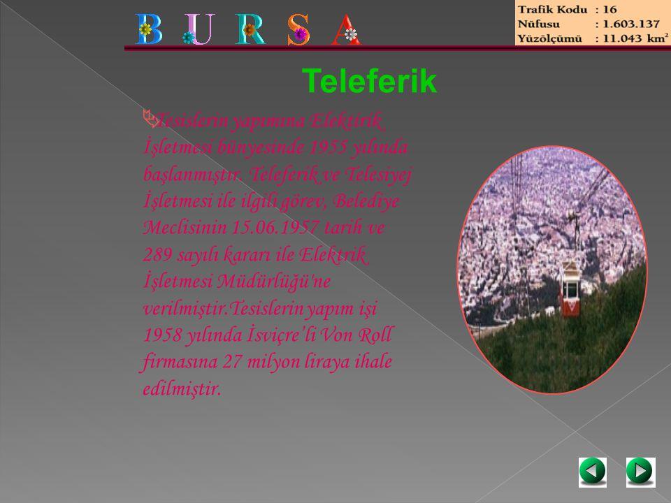 Teleferik  Tesislerin yapımına Elektirik İşletmesi bünyesinde 1955 yılında başlanmıştır. Teleferik ve Telesiyej İşletmesi ile ilgili görev, Belediye