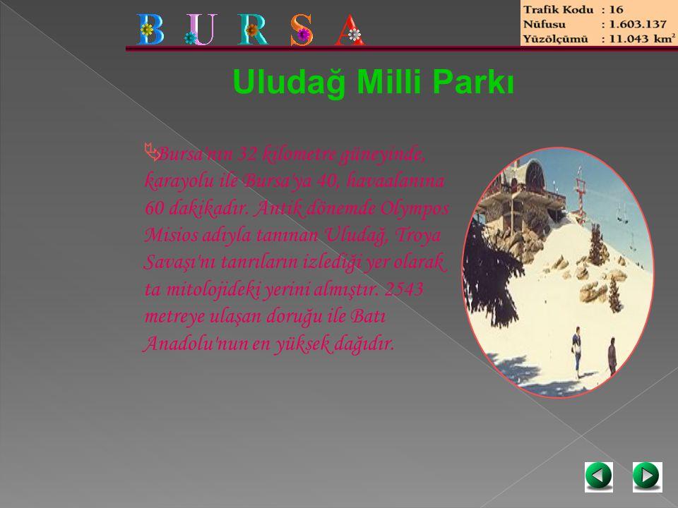 Uludağ Milli Parkı  Bursa'nın 32 kilometre güneyinde, karayolu ile Bursa'ya 40, havaalanına 60 dakikadır. Antik dönemde Olympos Misios adıyla tanınan