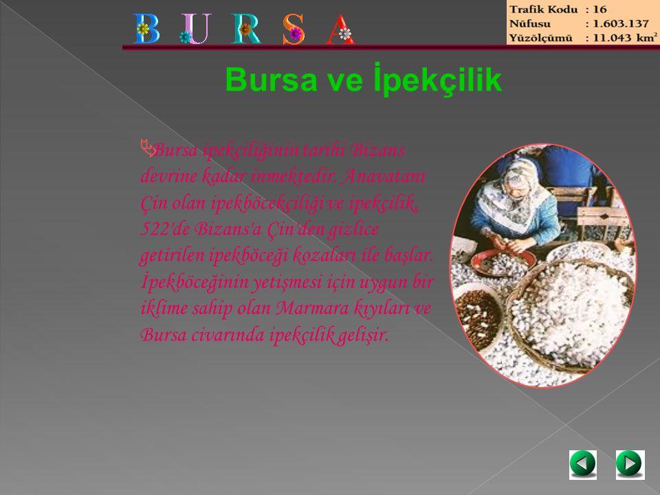 Bursa ve İpekçilik  Bursa ipekçiliğinin tarihi Bizans devrine kadar inmektedir. Anavatanı Çin olan ipekböcekçiliği ve ipekçilik, 522'de Bizans'a Çin'