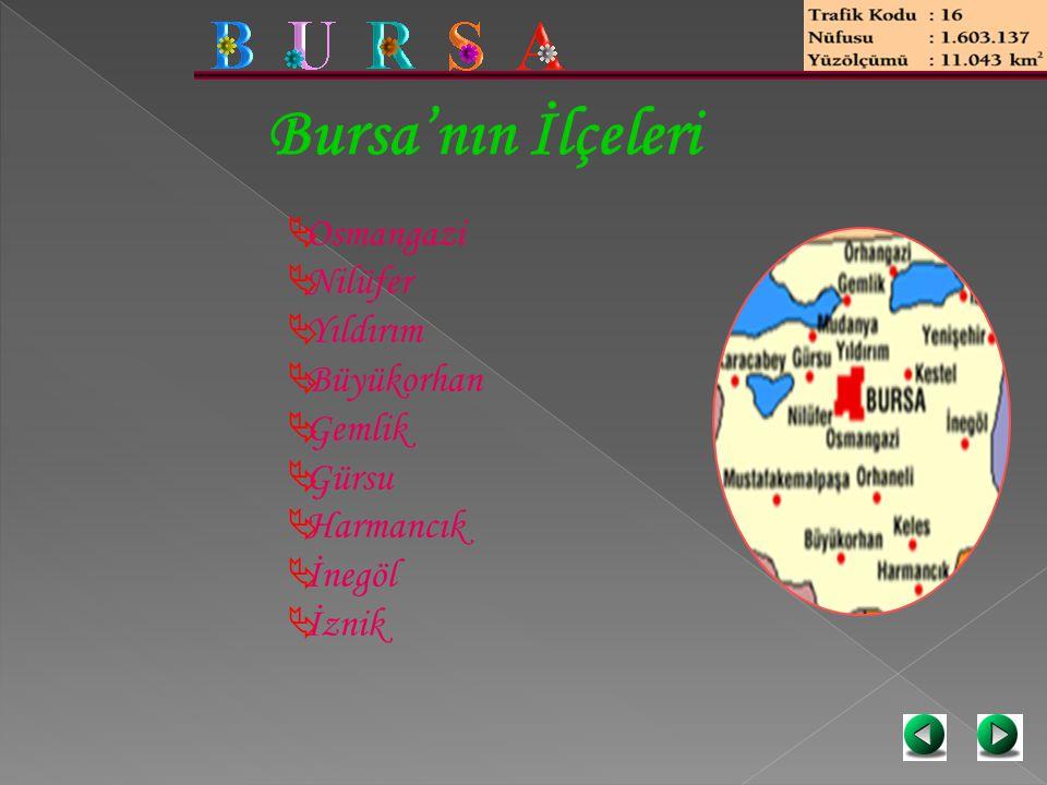 Bursa'nın İlçeleri  Osmangazi  Nilüfer  Yıldırım  Büyükorhan  Gemlik  Gürsu  Harmancık  İnegöl  İznik