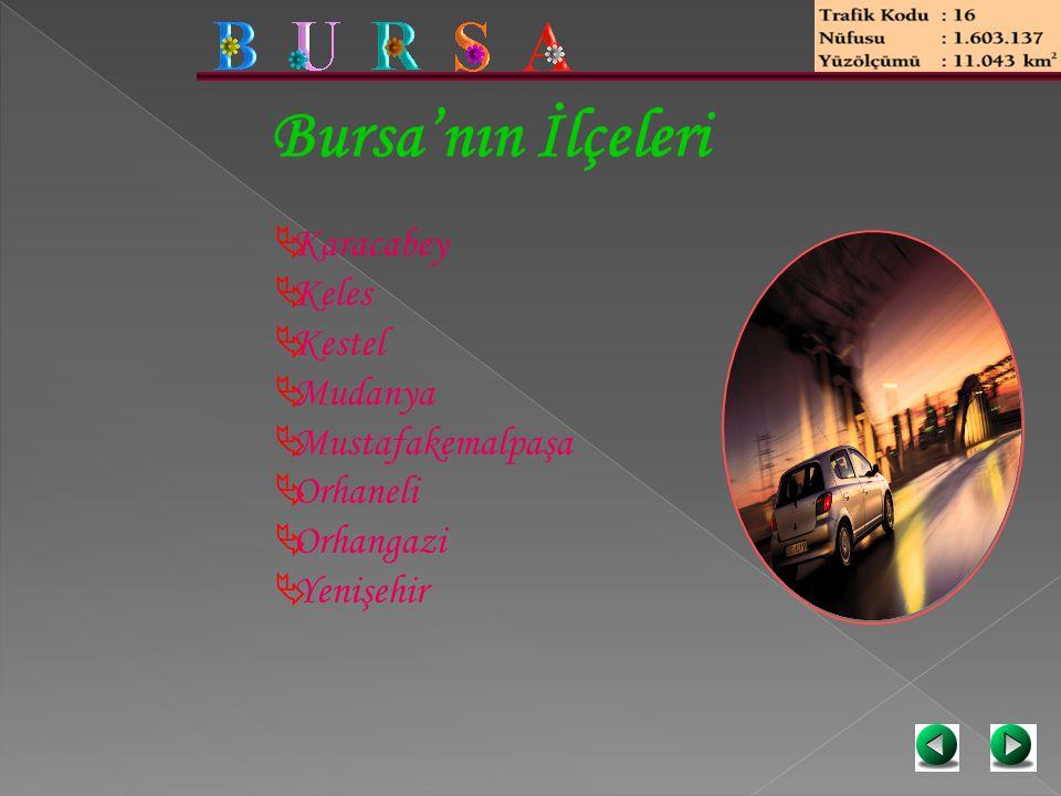 Bursa'nın İlçeleri  Karacabey  Keles  Kestel  Mudanya  Mustafakemalpaşa  Orhaneli  Orhangazi  Yenişehir