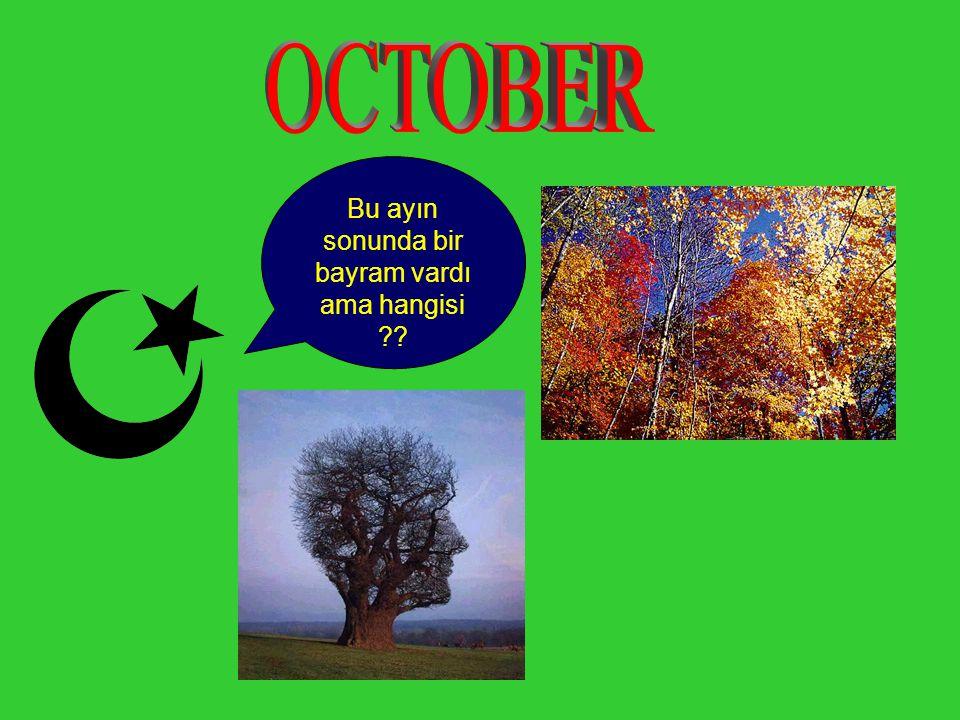 Bu ayın sonunda bir bayram vardı ama hangisi ??