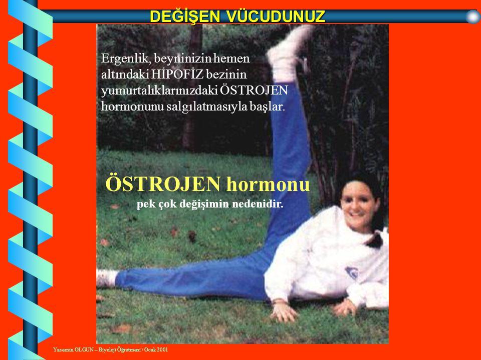 Yasemin OLGUN – Biyoloji Öğretmeni / Ocak 2001 VÜCUDUMUZDAKİ ÜREME SİSTEMİ