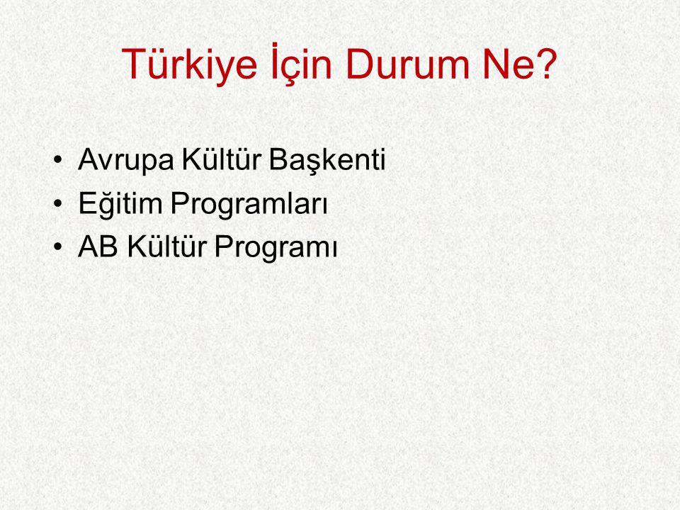 Türkiye İçin Durum Ne Avrupa Kültür Başkenti Eğitim Programları AB Kültür Programı
